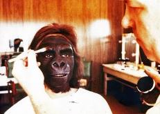 Ein Affe in der Maske ...