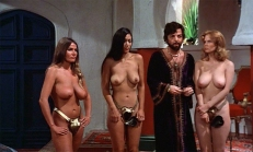 Der Scheich (Jerry Delony) untersucht die Mädels ...