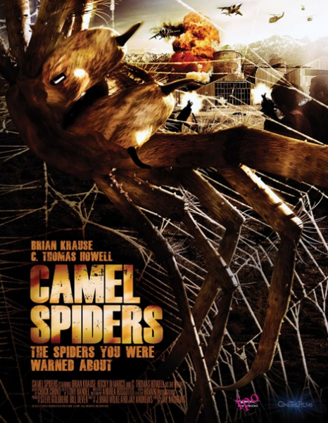 camelspiders