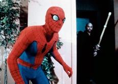 Spider-Man im Einsatz ...