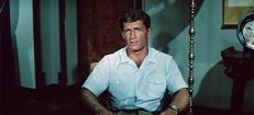 Larry McLean (Brad Harris)