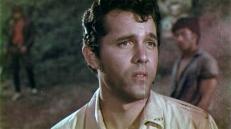 Dr. Bill Foster (John Ashley)