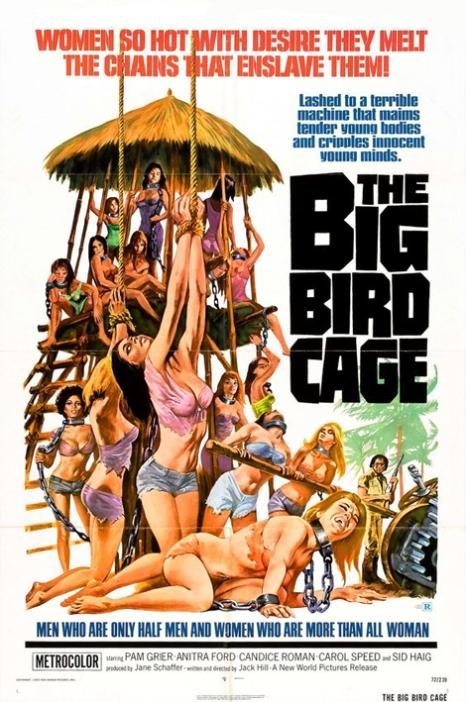 bigbirdcage